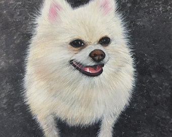 "Shop ""pomeranian"" in Pet Portraits"