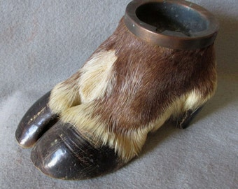 Antique 19thC Taxidermy Reindeer, Caribou Hoof, Ashtray