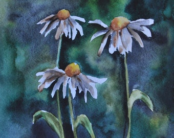 White Daisies Original Watercolor Painting