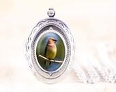 Cedar Waxwing Locket - Silver Bird Locket, Nature Locket, Silver Bird Jewelry Locket, Cedar Waxwing Photo Locket, Bird Photo Jewelry Pendant