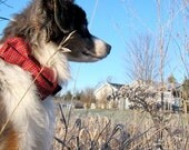 Traditional Tartan Plaid Bow Tie Dog Collar - red