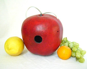 Apple  BIRD HOUSE, Hand Painted Gourd, Red Apple Gourd. Ready to Ship
