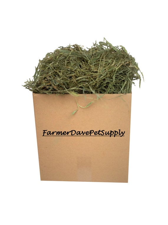"48 oz Premium 2nd Cut Chinchilla & Guinea Pig Timothy ""HAY-IN-A-BOX"""