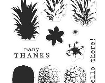 Hero Arts Clear Stamps Color Layering Pineapple CL976