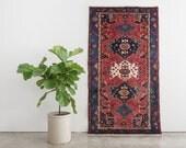 SAROSH 4x6.5 Hand Knotted Persian Wool Rug