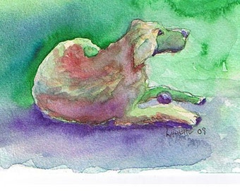 Dog in Colors