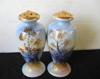 Asian Nature design salt and pepper shakers with gold tops..made in Japan