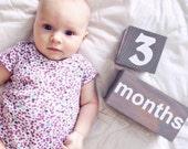Baby age blocks. Newborn Baby gift. Large gender neutral baby gift. Baby milestone blocks. Baby photo props. Pregnancy blocks
