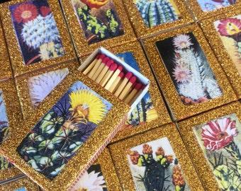 5 Cactus Succulents Matchbox Set Wedding Favors