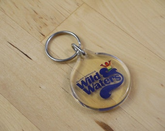 Vintage Wild Waters Silver Springs Florida Clear Plastic Square Key Chain