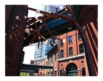 Distillery District Tree, Toronto 2, Photo Print