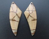 Gorgeous Picture jasper earring set, drilled , Jewelry making supplies S7189