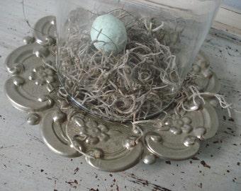 Glass Dome Cloche/Bird Nest Cloche/Spring Decor/small glass cloche