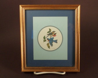 Small Framed Audubon Picture Professionally Framed, Bluebirds