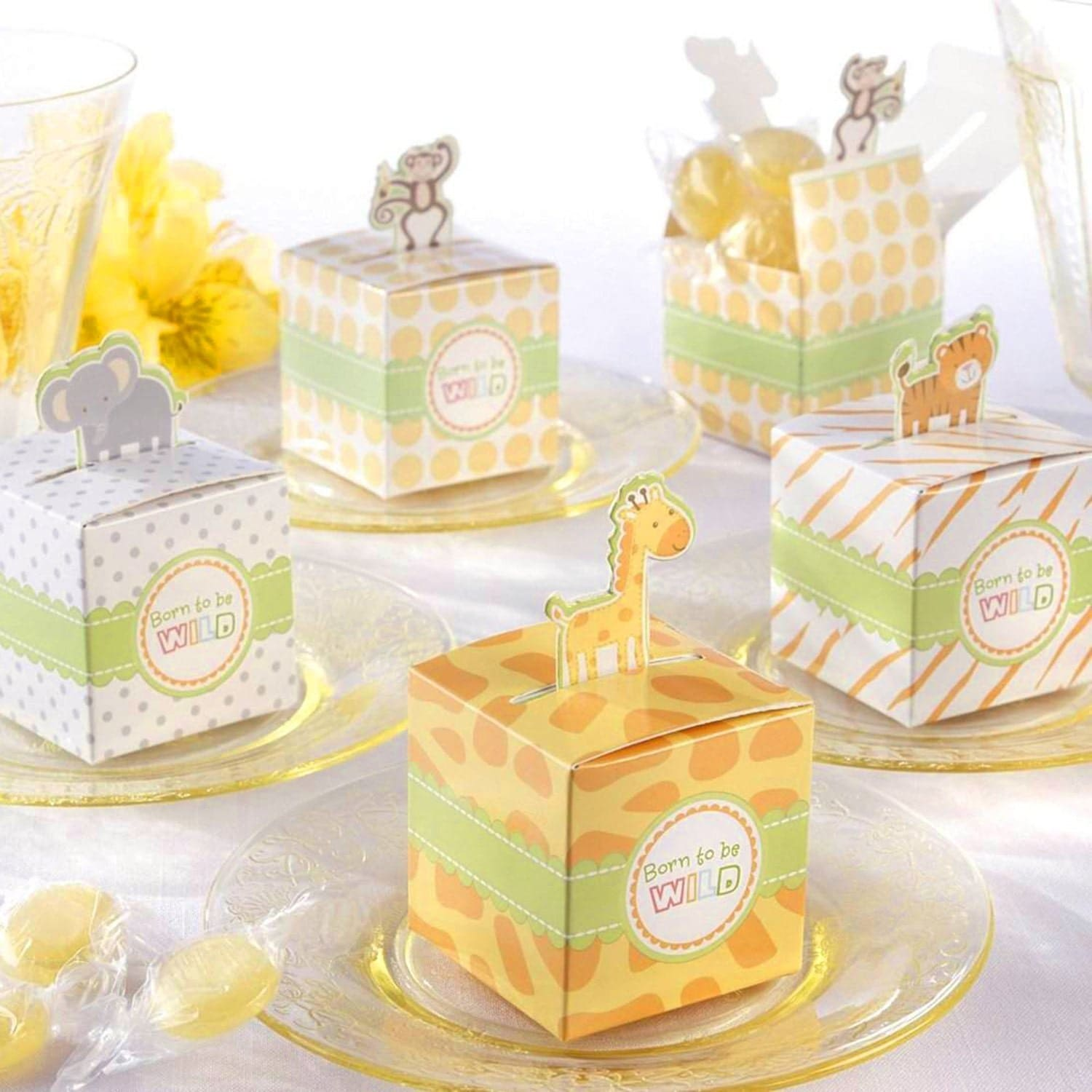 Jungle Themed Baby Shower Favor Boxes Safari Themed Baby