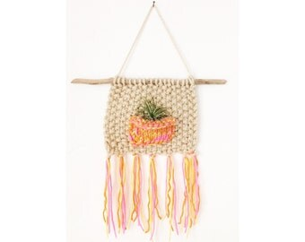 Knitted Air Plant Wall Hanging, Knit Plant Holder with Beach Twig, Boho Home, Boho Wall Hanging, Hanging Airplant Display