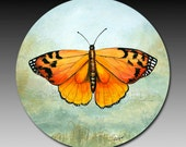 Monarch Butterfly Absorbent Art Coaster