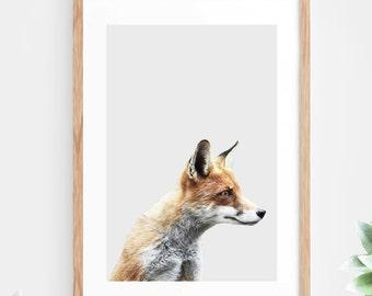 Fox Printable Wall Art Instant Download Animal Photo Photography Wall Decor Modern Minimalist Wall Art Printable Poster Contemporary Fox