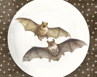 bats II melamine plate