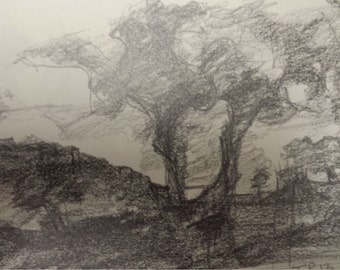 Pencil Drawing on Paper, Small scale, Original Pencil Drawing, Lanscape Drawing on Paper, impressionist Nature Drawing, Drawing of Trees