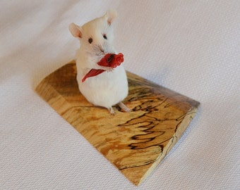 Taxidermy mouse with rose in tissue paper.