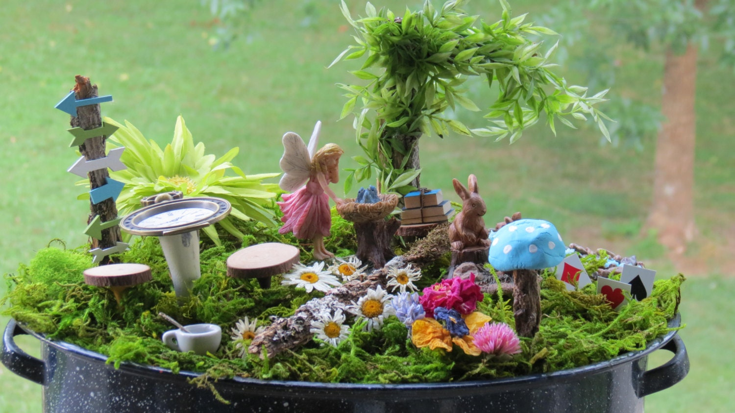 Complete fairy garden kit with container alice in wonderland for Alice in wonderland fairy garden
