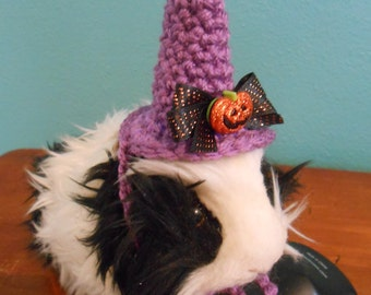 guinea pig witch hat guinea pig clothes purple bearded dragon witch hat pet