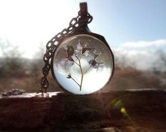 terrarium necklace, terrarium necklaces, bridesmaids necklaces, forget me not necklace, Real Forget-me-not Flowers Necklace, dried forget me