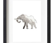 Elephant Prints for Wall Decoration