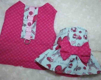 Dog Diapers / size SMALL /  Waterproof / Basic Pink  and Jade with matching top