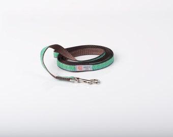 Fashion Designer Dog leash Teal