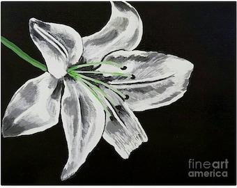 "Original 11x14 Painting ""Lilly"""