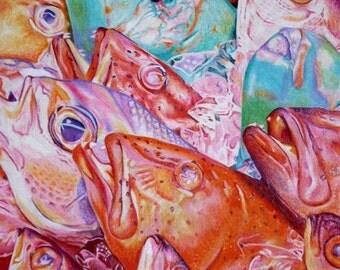 """Fish - 8x10"""" print"""