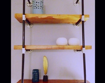 Modern rustic bookshelves