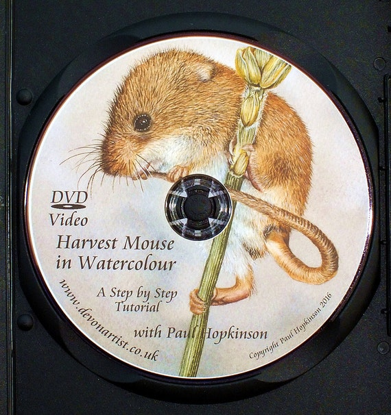 Learn to Paint, Watercolour Course Video DVD, 173 Minutes of Tuition, Harvest Mouse, PAL Format