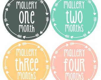 Personalized Baby Girl Monthly Milestone Sticker Set of 12 - Monthly Baby Stickers - Baby Girl Photo Prop - Baby Milestone Stickers 519