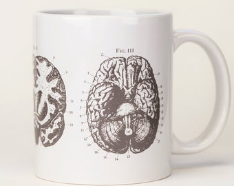 Brain Anatomy Mug | Nurse Gift, Neuroscience, Ceramic Coffee Mug, Anatomical, Nursing Science Biology, Grays Anatomy, Neuron, teacher gift