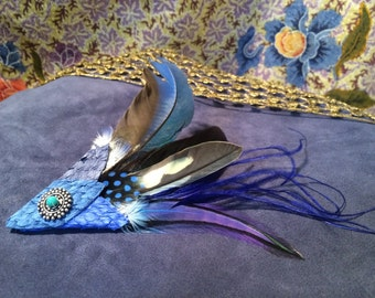 Barrette feathers