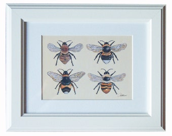 Bee Picture Bee Print Bee Illustrative Artwork - Bumble Bees and Carder Bees. A popular choice making a great gift this Christmas
