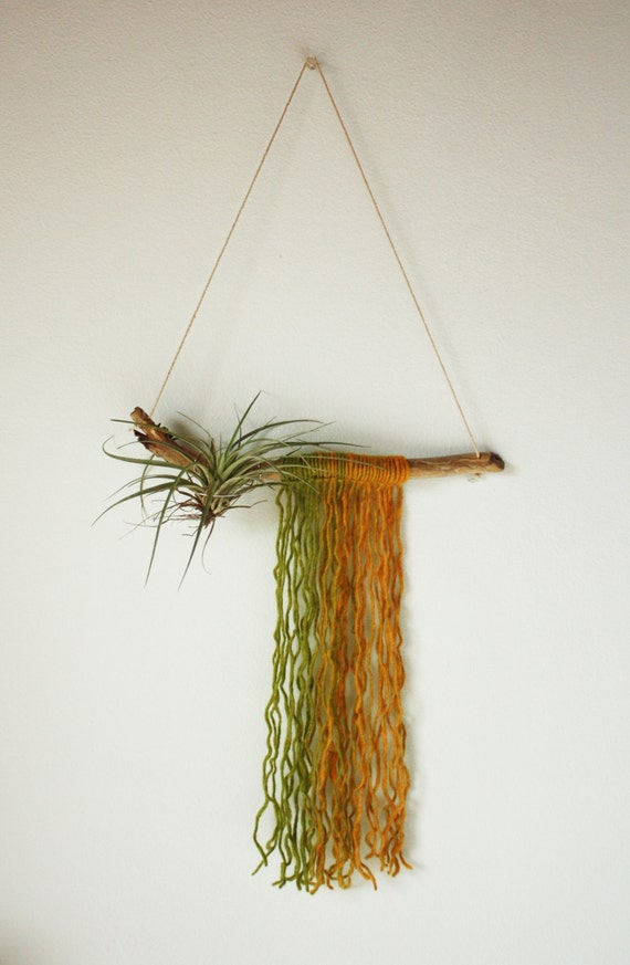 Driftwood air plant hanger yarn wall hanging by for Air plant wall hanger