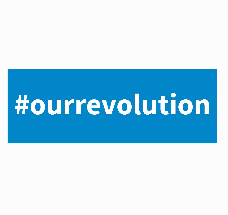 bernie sanders our revolution pdf