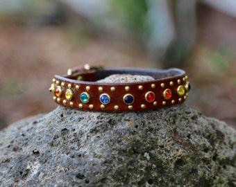 Rainbow Crystals with Border Leather Collar