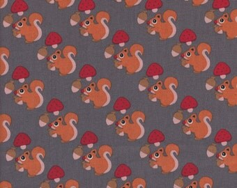 Squirrel - Grey - Stenzo Poplin