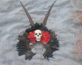 Skull and feather headdress