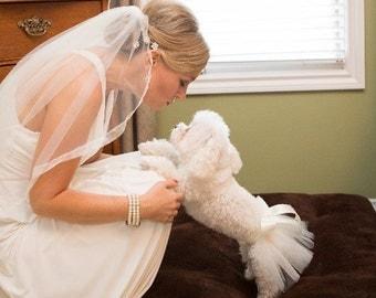 Ivory Dog Tutu - Ivory Pet Tutu - Wedding Tutu - Dog bridesmaid - Dog TuTu