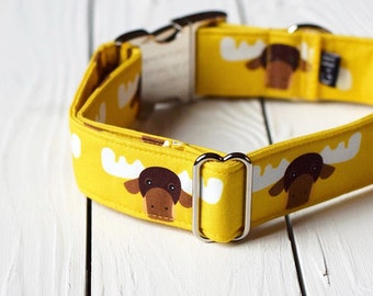 Gold Moose Collar, Winter, Animal, Yellow, Female Dog, Male Dog, Christmas, Metal Buckle
