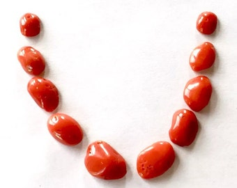 NO dye natural red coral cabochon for necklace, bracelet, ring
