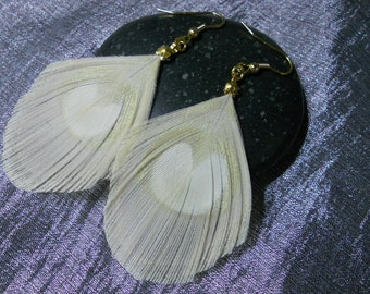 Natural Peacock feather white and gold plated earrings.