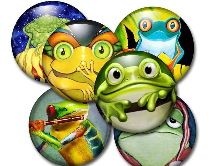 Frog Refrigerator Magnets - Kid's Party Favors - Bulletin Board Magnets - Classroom Magnets - Gifts kids - Magnetic Chalkboard