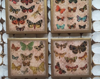 COASTERS!! Set of Beautiful Butterfly Coasters with Gold Trim